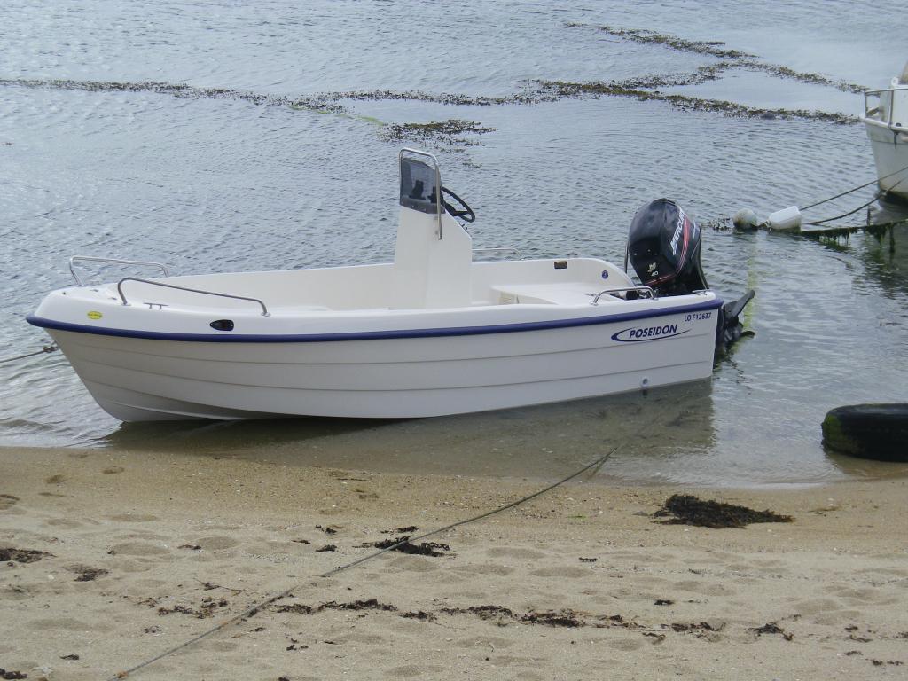 poseidon 450 royal boat entretien reparation moteurs toutes marques mercury yamaha honda. Black Bedroom Furniture Sets. Home Design Ideas
